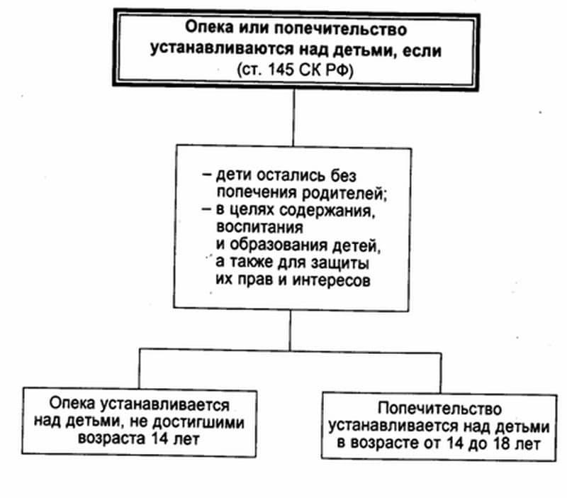 Код должности в штатном расписании